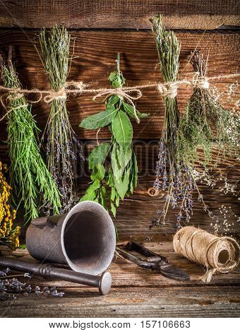 Therapeutic Herbs For Tincture As Natural Medicine
