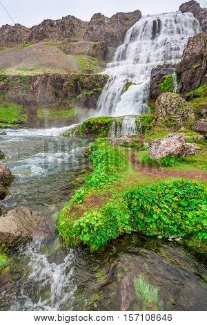 At The Foot Of A Waterfall Dynjandi In Iceland