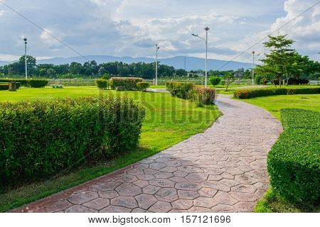 Curve Stone Walkway and green shrub in public park
