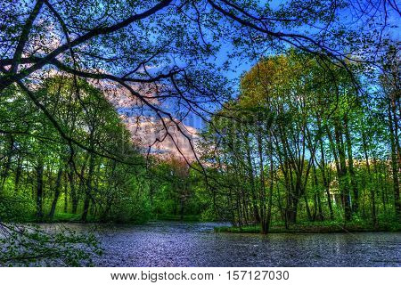 Summer landscape. Green trees around the lake. The bright colors of nature in the park by the lake.