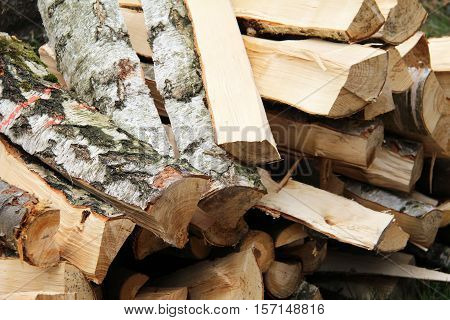 Stack of wood / Felled trees stacked in the woodpile in the forest