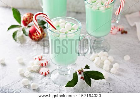 Green peppermint hot chocolate with marshmallows and candy canes