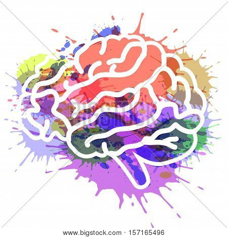 vector illustration brain on watercolor background EPS 10.