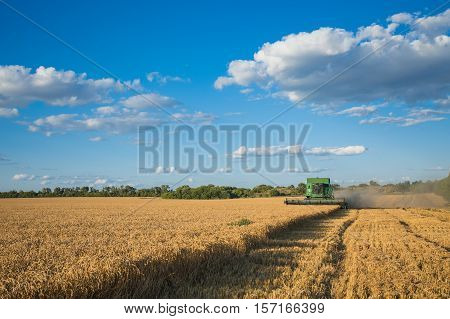 Harvesting Combine In The Field