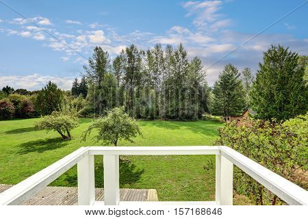Backyard view with lots of greenery from the house balcony. Beautiful landscape. Northwest USA