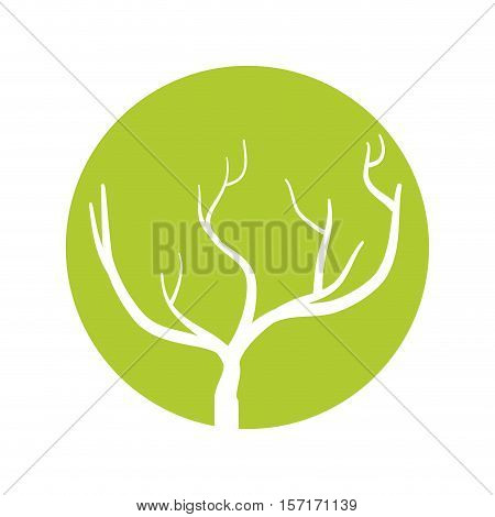 tree branch hand drawing isolated icon vector illustration design