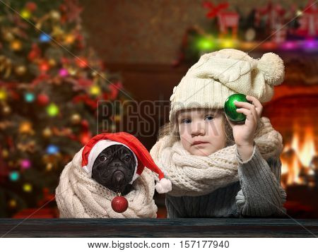 Little girl and dog holding Christmas toys - balls. House with Christmas decor. Christmas tree fireplace. Child and dog in the hat and scarf