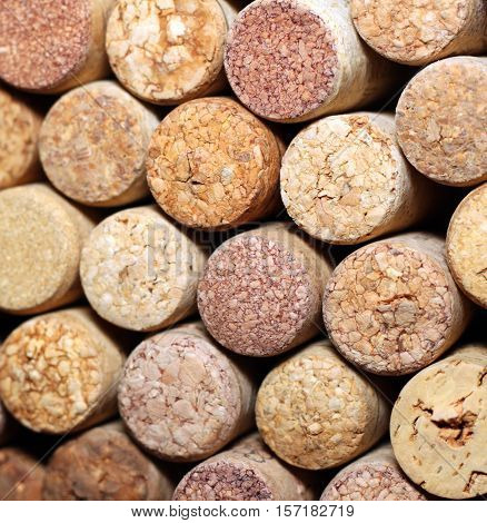 Wall of many different wine corks. Closeup of wine corks. Close up of cork wine.