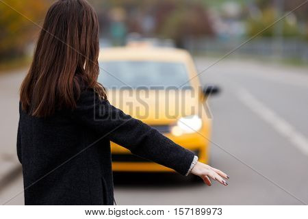 Portrait from the back of brunette woman in black coat stopping yellow taxi in day time