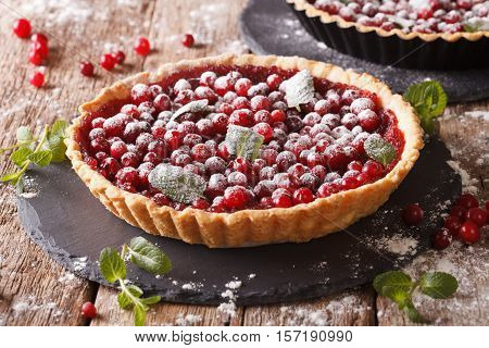 Cranberry Tart With Jam, Powdered Sugar Decorated With Mint Close Up. Horizontal