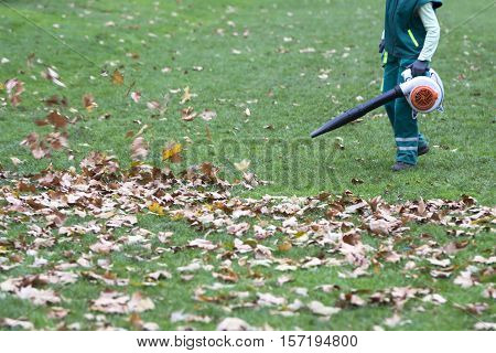 Worker in the park in autumn collects leaves with leaf blower