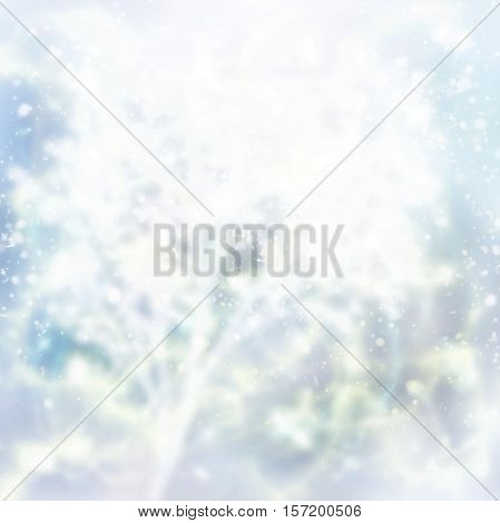 christmas defosued background tree branch and blue gleaming bokeh background