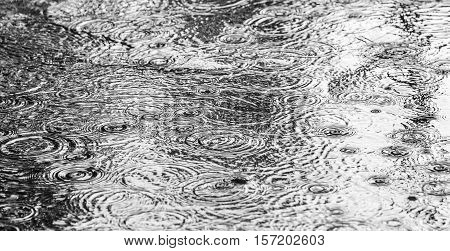 Rain On Asphalt Or Tarmac Road Creating Ripples