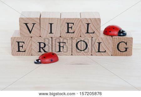 The german words for a lot of success (Viel Erfolg) and ladybugs on wood