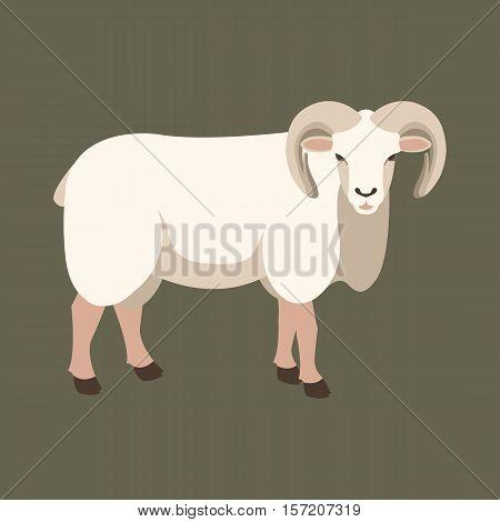 sheep ram  vector illustration style Flat profile