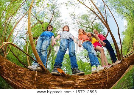 Bottom view portrait of five teenage kids standing together holding hands on trunk of fallen tree in summer forest