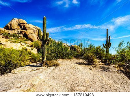Desert Landscape with Large Rock Formations Saguaro Cacti at the Boulders in the desert near Carefree Arizona, USA