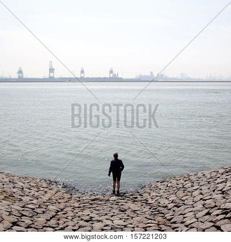 boy looks over Nieuwe Waterweg at harbour cranes near rotterdam harbour