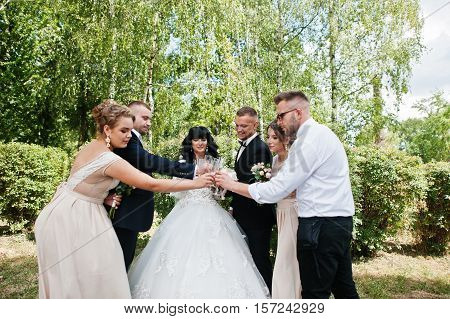 Stylish Wedding Couple, Groomsman And Bridesmaids Drinking Champagne Outdoor.