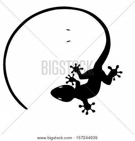 lagartija yim yam ,lagarto ,vector , blanco y negro
