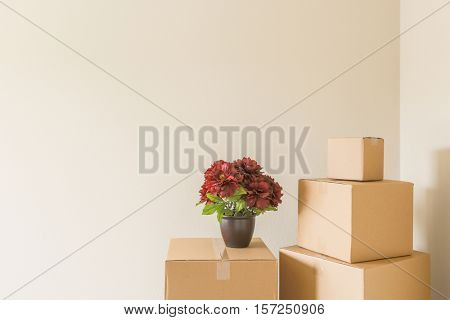 Variety of Packed Moving Boxes and Potted Plants In Empty Room with Room For Text.