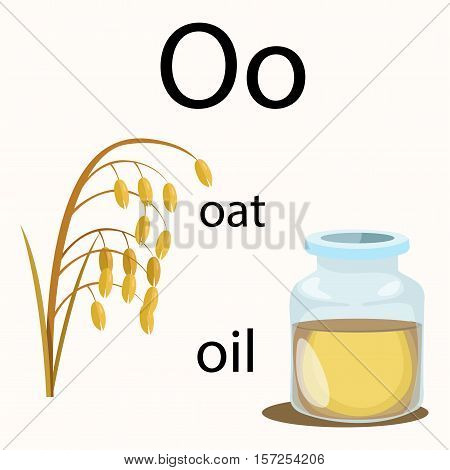 Illustrator of o vocabulary with oat and oil