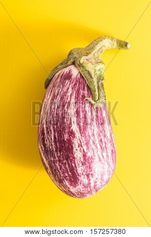 Aubergine With Long Shadow, On Vivid Yellow Background