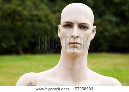 thoughtfull male dummy with bare-faced striking head