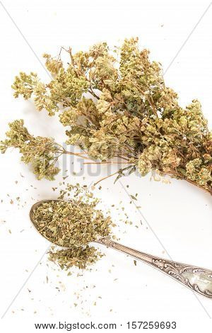Dry Oregano On Antique Spoon With Bouquet Of Dry Oregano, On Withe Background.