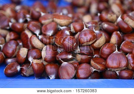 Many ripe chestnuts. Autumn fruits. Tasty chestnuts.