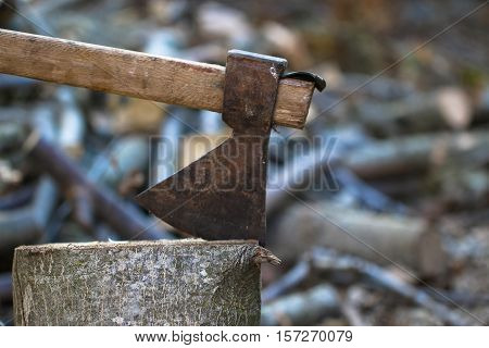 Old heavy ax tool impaled in log and fragments of alder wood behind it, hatchet tool splitting wood stumps and chopped logs lying on the ground.