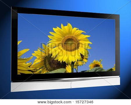 TV with sunflower on screen