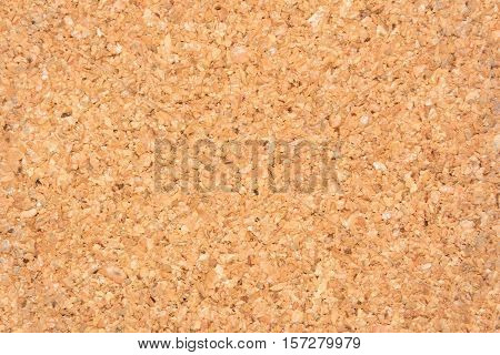 Cortical texture of wood. natural color and texture. Cork