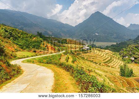 Bending Road Among Rice Terraces At Highlands Of Sa Pa, Vietnam
