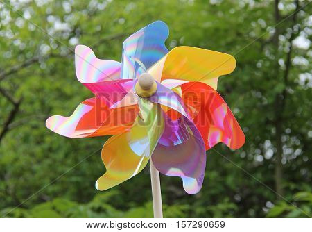 A Colourful Plastic Windmill Toy for a Child.