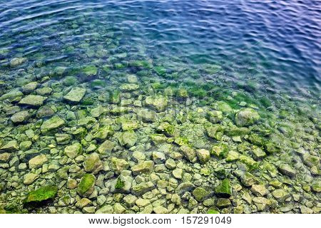 Spirogyra in bottom rocks in water of Lake Baikal. Foreign body is clogging lake creating threat of ecological catastrophe. poster