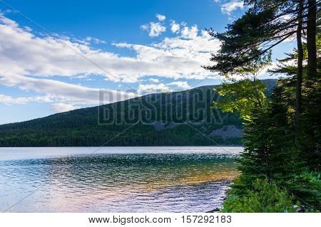 Jordan Pond at Acadia National Park. Daytime. Near the tree lined shore with translucent water.