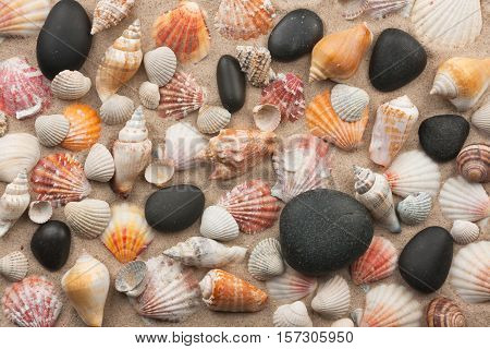 Beautiful mixture of black stones and seashells on sand. View from above
