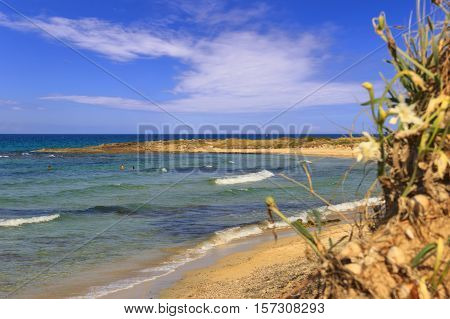 Summer seascape,Salento coast: Nature Reserve of Torre Guaceto.BRINDISI (Apulia)-ITALY-Mediterranean maquis: a nature sanctuary between the land and the sea.