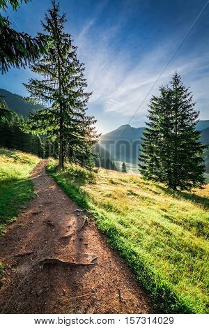 Wonderful Valley In Tatra Mountains At Dawn In Summer