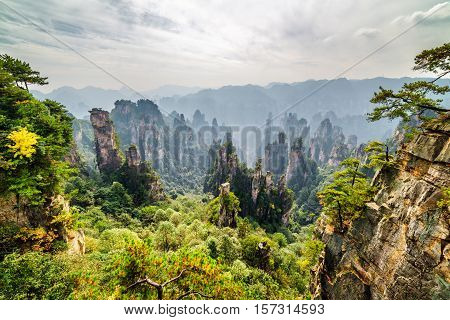Natural Quartz Sandstone Pillars Among Woods (avatar Mountains)