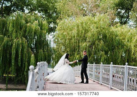 Dancing Wedding Couple On Bridge Background Island With Willow Trees.