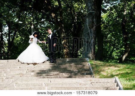 Nifty Wedding Couple At Stairs On Park At Sunny Wedding Day.