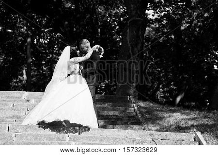 Nifty Wedding Couple At Stairs On Park At Sunny Wedding Day. Black And White Photo