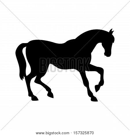 horse vector illustration black silhouette profile side
