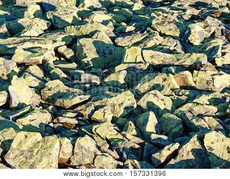 Slide-rocks with yellow lichen on stones in morning light background.