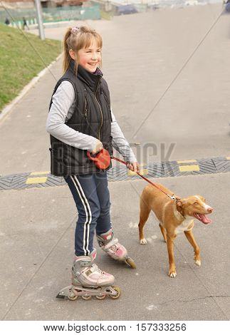 Girl rollerskating walking the dog in the park close up photo