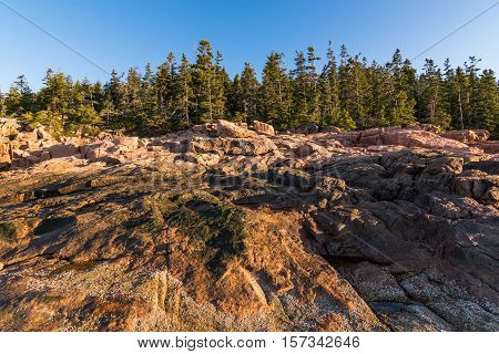 View of the rocky cliff shore line at Acadia National Park. Maine New England at sunrise