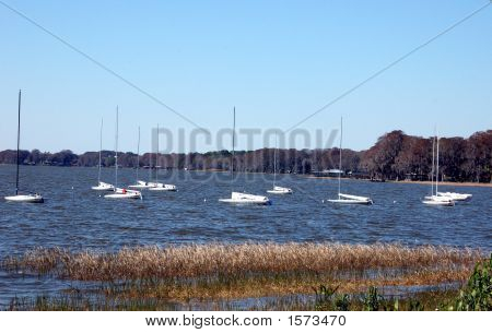 SAILBOATS AT REST IN CALM BAY ON LAKE
