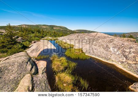 settled water in the rocks of cadillac mountain. Acadia National Park Maine
